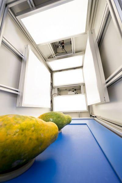 robot herkent kleur van groenten